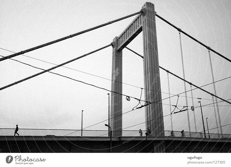 The Bridge Brücke Budapest