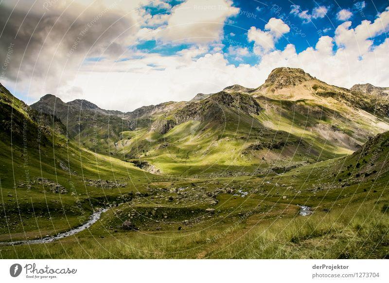 Pyrenäen-Wanderweg 2 Natur Ferien & Urlaub & Reisen Pflanze Sommer Landschaft Wolken Freude Tier Ferne Berge u. Gebirge Umwelt Gefühle Wiese Freiheit Felsen