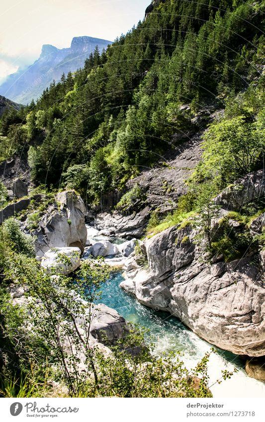 Pyrenäen-Wanderweg 1 Ferien & Urlaub & Reisen Tourismus Ausflug Abenteuer Ferne Freiheit Camping Berge u. Gebirge wandern Umwelt Natur Landschaft Pflanze Tier