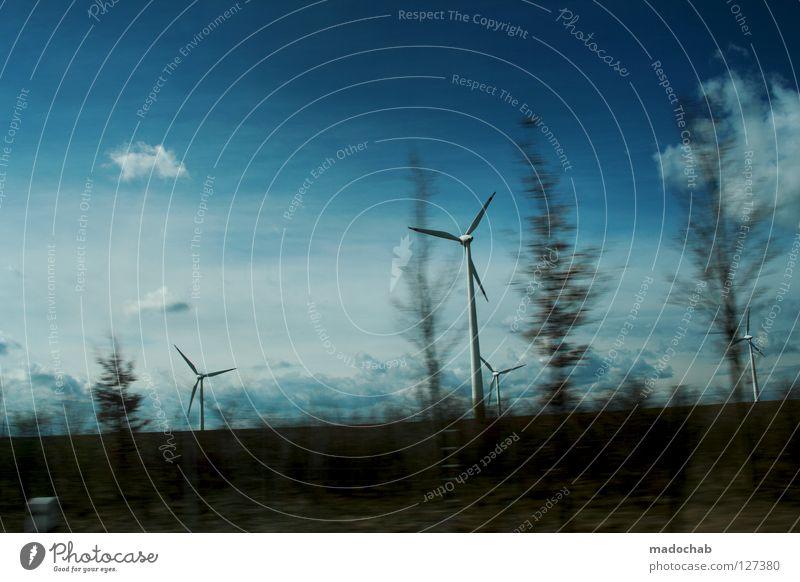 ROADTRIPPIN' Himmel Natur blau Ferien & Urlaub & Reisen schön Baum Freude Wolken Straße Wärme Gefühle Bewegung Wege & Pfade dreckig Energiewirtschaft Geschwindigkeit