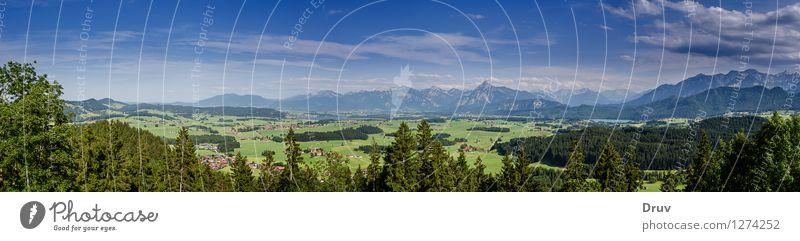 Alpenpanorama Himmel Natur Ferien & Urlaub & Reisen blau Pflanze grün Sommer Erholung Landschaft Wolken Wald Berge u. Gebirge Deutschland Tourismus Ausflug