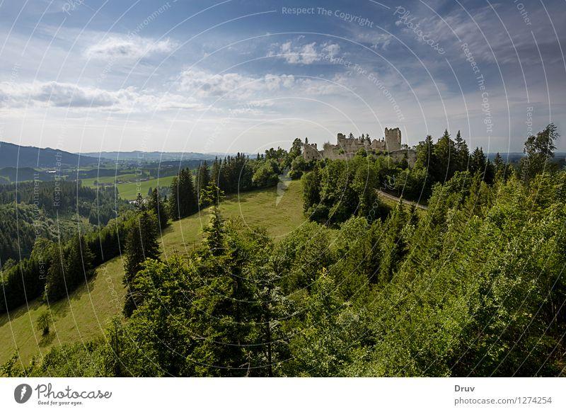 Burg Ruine Hohenfreyberg Natur Ferien & Urlaub & Reisen blau Pflanze grün Sommer Erholung Landschaft Ferne Wald Berge u. Gebirge Wiese Deutschland Tourismus