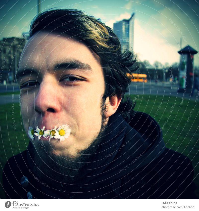 Frühling zum Mittag Mensch Jugendliche Pflanze Freude Gesicht Erwachsene Junger Mann Frühling lustig Blüte 18-30 Jahre Bart Gänseblümchen Unsinn Vignettierung umweltfreundlich