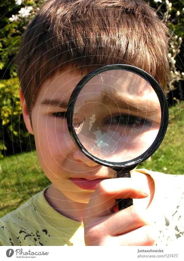 Die Welt in groß schaut komisch aus Mensch Kind Spielen Junge klein Sicherheit Spuren Konzentration skeptisch Genauigkeit Lupe Spitzel untersuchen vergrößert