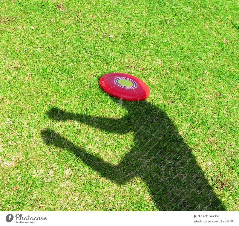 Die Welt ist eine Scheibe Frisbee Silhouette grün rot Gras Diskus Spielen Kopfschmerzen Freude Fensterscheibe Schatten Sonne Garten Schattenboxen Lautsprecher