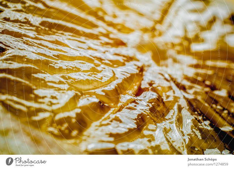 Die Zitrone Sommer Gesunde Ernährung gelb Essen Foodfotografie Gesundheit Lebensmittel Frucht ästhetisch Ernährung nah lecker Bioprodukte Erfrischung Vitamin Diät