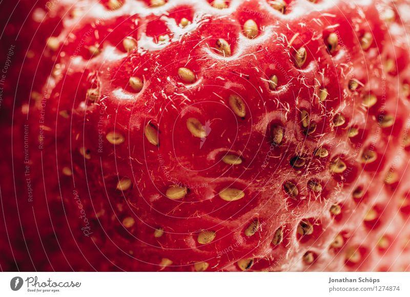 Die Erdbeere III Lebensmittel Frucht Ernährung Essen Frühstück Bioprodukte Vegetarische Ernährung Gesundheit Gesunde Ernährung genießen ästhetisch lecker Speise