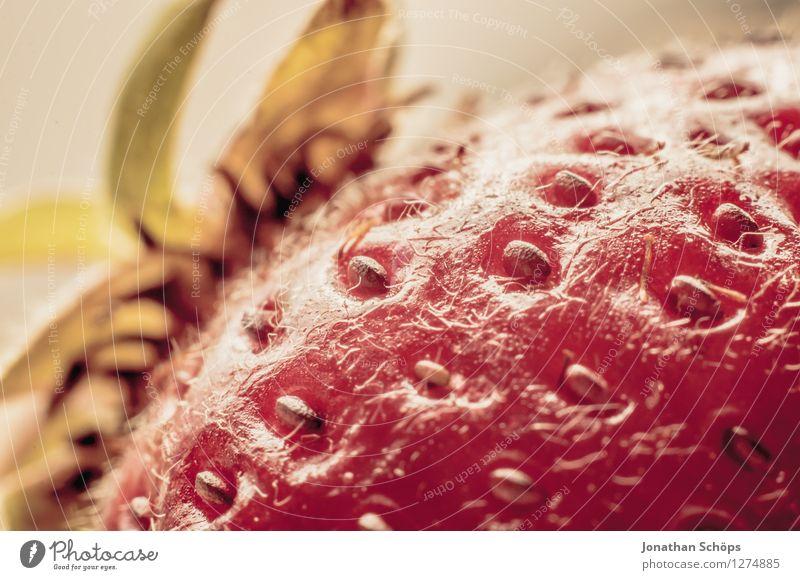 Die Erdbeere I Gesunde Ernährung Essen Foodfotografie Gesundheit Lebensmittel Frucht ästhetisch genießen lecker Bioprodukte Frühstück Vitamin