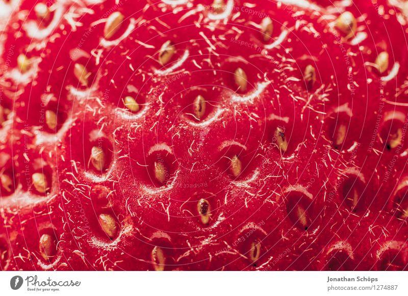 Die Erdbeere II Lebensmittel Frucht Ernährung Essen Frühstück Bioprodukte Vegetarische Ernährung Gesundheit Gesunde Ernährung genießen ästhetisch lecker Speise