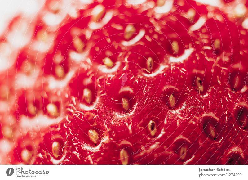 Die Erdbeere IV Lebensmittel Frucht Ernährung Essen Frühstück Bioprodukte Vegetarische Ernährung Gesundheit Gesunde Ernährung genießen ästhetisch lecker Speise