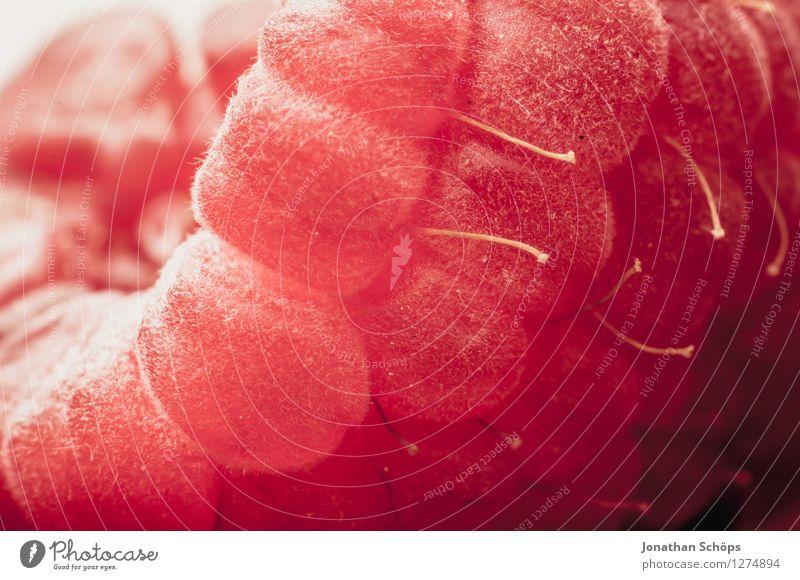 Die Himbeere I Lebensmittel Frucht Ernährung Essen Frühstück Bioprodukte Vegetarische Ernährung Gesundheit Gesunde Ernährung genießen ästhetisch lecker rot