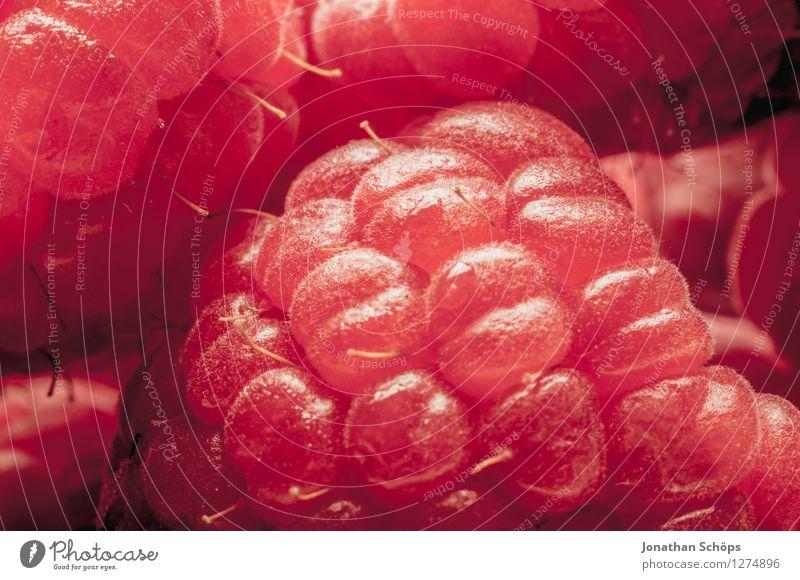 Die Himbeere III Himbeeren Lebensmittel Ernährung Gesunde Ernährung Speise Essen Foodfotografie Frühstück Bioprodukte Vegetarische Ernährung ästhetisch Frucht