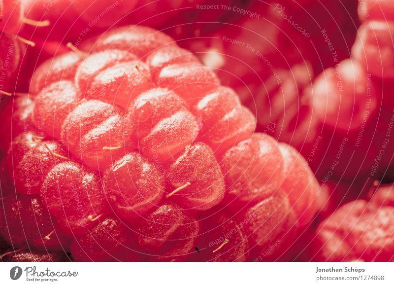 Die Himbeere IV Himbeeren Lebensmittel Ernährung Gesunde Ernährung Speise Essen Foodfotografie Frühstück Bioprodukte Vegetarische Ernährung ästhetisch Frucht