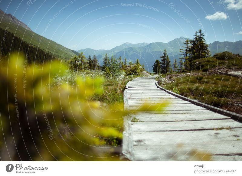 Wanderweg Himmel Natur blau grün Sommer Landschaft Berge u. Gebirge Umwelt natürlich Tourismus Schönes Wetter Fußweg Alpen Wolkenloser Himmel Schweiz