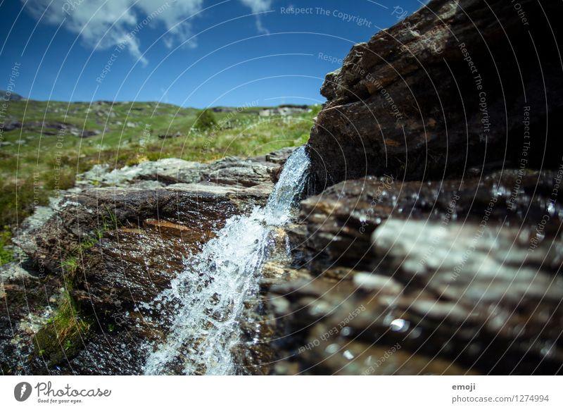 kühl und klar Umwelt Natur Landschaft Sommer Schönes Wetter Bach nachhaltig natürlich Wasser Geplätscher gletscherwasser Schweiz Wanderausflug Farbfoto