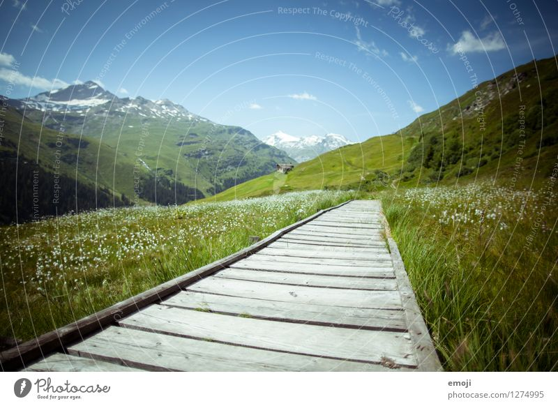 Svizzera Umwelt Natur Landschaft Himmel Schönes Wetter Wiese Berge u. Gebirge natürlich blau grün Fußweg Steg Tourismus Schweiz Farbfoto mehrfarbig