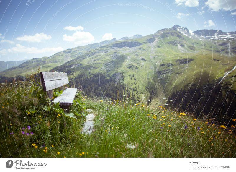 PAUSE Umwelt Natur Landschaft Pflanze Frühling Sommer Schönes Wetter Wiese Hügel Alpen Berge u. Gebirge natürlich grün Bank Rastplatz Schweiz Tourismus