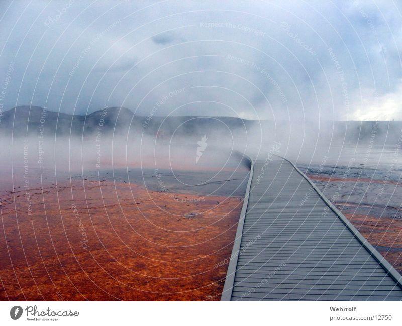 Der Weg in den Nebel Steg heiß Holz unheimlich Heisse Quellen Amerika Wyoming Wege & Pfade Wasser Himmel Yellowstone Nationalpark USA Dunst Wasserdampf