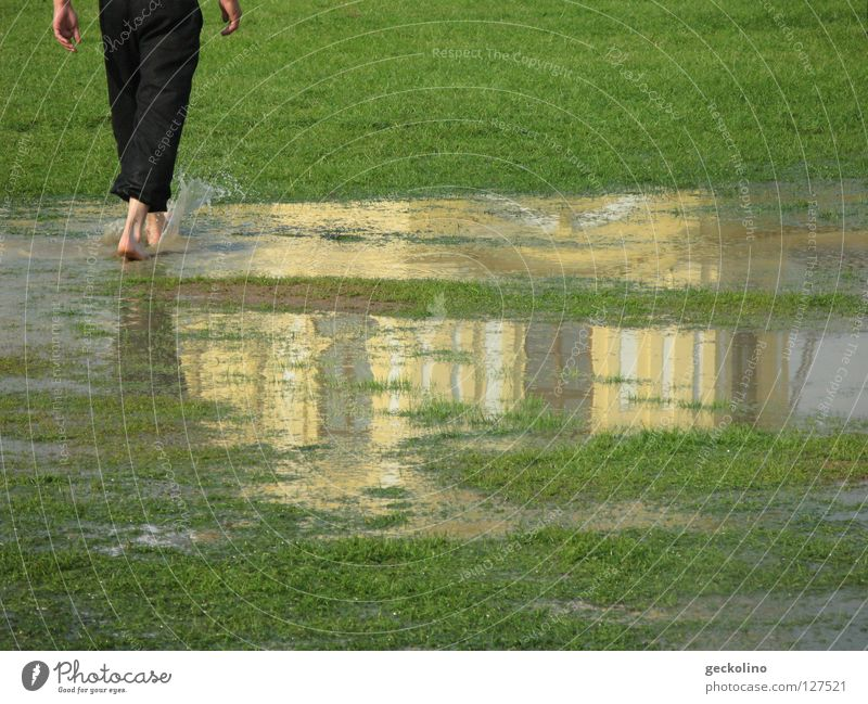 temporarily Wasser grün Sommer Wiese Regen gehen nass Gewitter spritzen Pfütze Barfuß Schlamm Gleichgültigkeit Kassel Flußauen