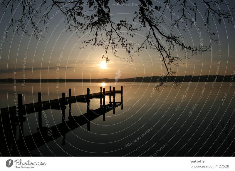 When the Sun goes down... Himmel Wasser Baum Sonne ruhig See träumen Romantik Ast München Steg Starnberg Starnberger See