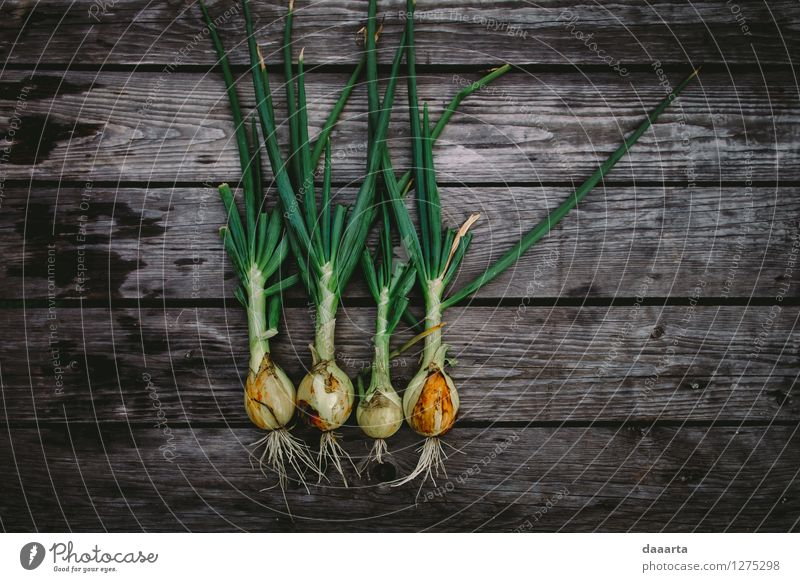 das geheilt Lebensmittel Gemüse Salat Salatbeilage Zwiebel Frühlingszwiebel Ernährung Bioprodukte Vegetarische Ernährung Lifestyle elegant Stil Freude