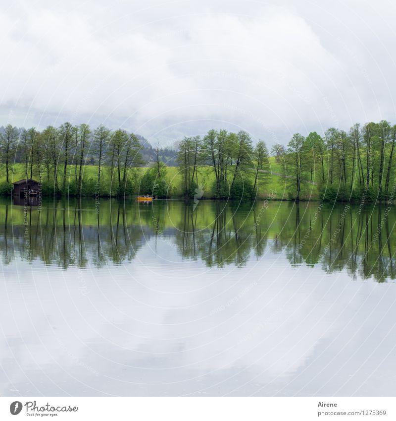 einfach doppelt Pflanze Baum Seeufer Teich Hütte Bootshaus Bootsfahrt Fischerboot Ruderboot Schwimmen & Baden grün orange ruhig Einsamkeit Erholung Freiheit