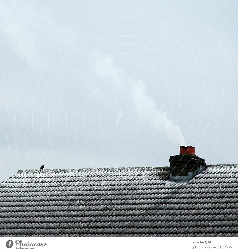 Das Dach der Welt. II alt Einsamkeit ruhig Wolken Winter kalt Schnee grau Zeit außergewöhnlich Vogel Eis Wind leer Beginn einfach