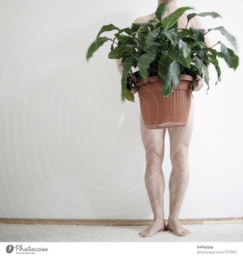 fortpflanzung Natur Mann weiß grün Pflanze Freude Umwelt nackt Beine Fuß hell Kunst Raum Erde Haut Freizeit & Hobby