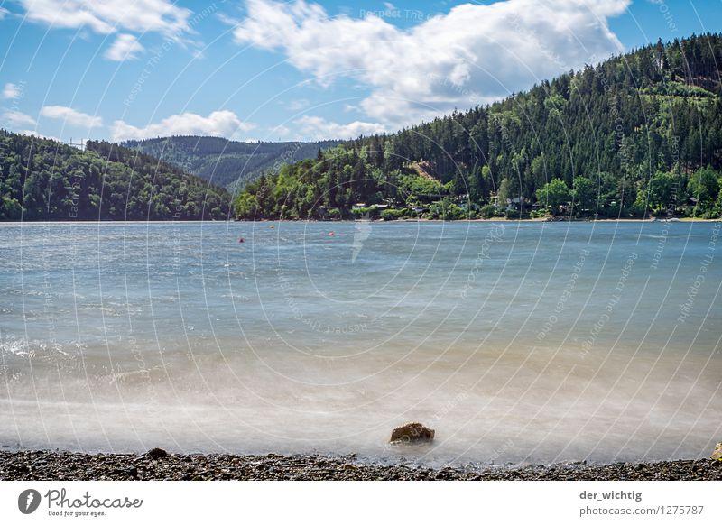 Am See 1 Erholung ruhig Schwimmen & Baden Freizeit & Hobby Angeln Ferien & Urlaub & Reisen Tourismus Ausflug Ferne Freiheit Camping Fahrradtour Sommer