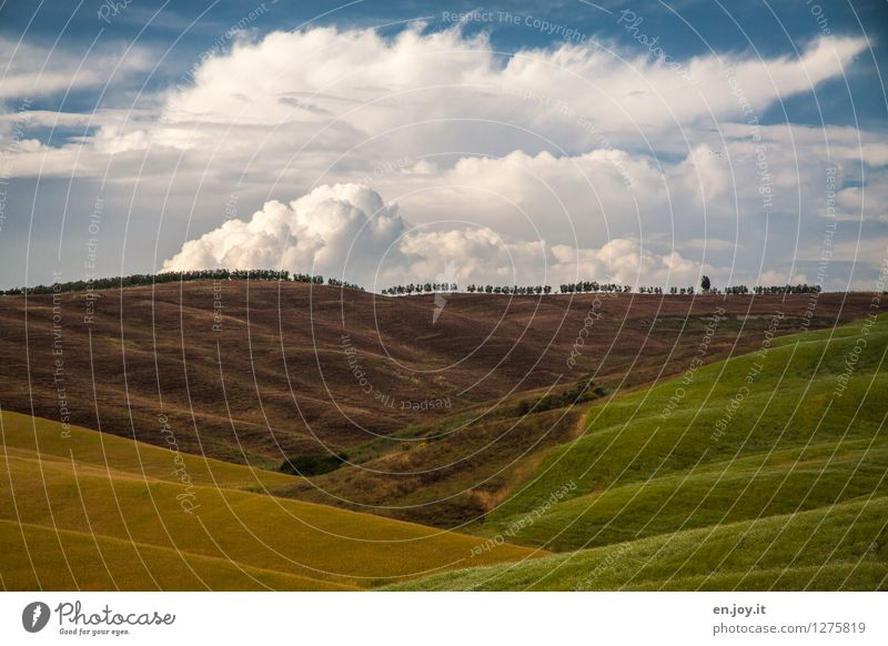 hinter dem Horizont... Himmel Natur Ferien & Urlaub & Reisen Sommer Erholung Landschaft Gesunde Ernährung ruhig Wolken Ferne Umwelt Wiese Zufriedenheit Wetter