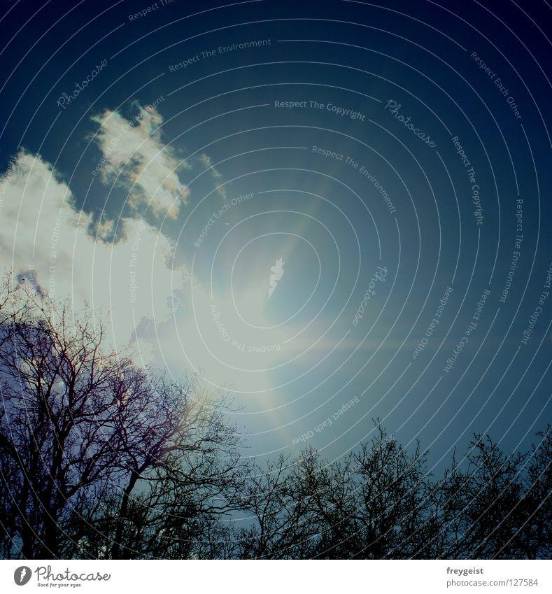 Midnight Sun Mitternacht Nacht Beleuchtung dunkel Licht Gegenlicht Sonnenstrahlen Wolken Baum Himmel midnight sun Graffiti clouds trees Ast Natur sky anni k.
