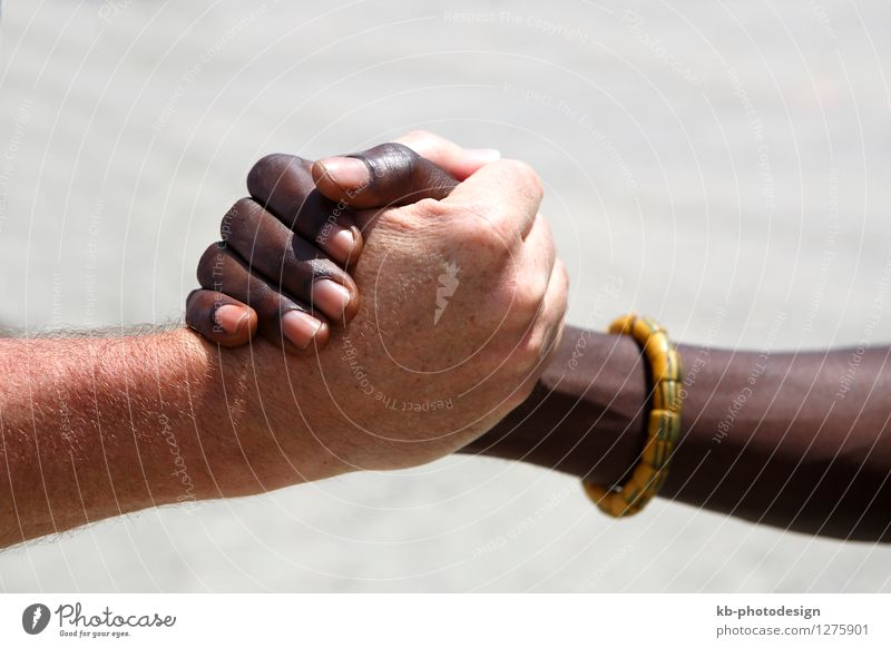 Handshake between a Caucasian and an African Gesundheit Wirtschaft Handel Business Erfolg Team Mensch maskulin Erwachsene Finger 2 30-45 Jahre