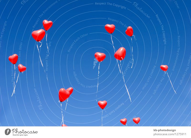 Balloon hearts in the sky Liebe Gefühle Feste & Feiern fliegen Zusammensein Geburtstag Herz Zeichen Romantik Hochzeit Verliebtheit Valentinstag Muttertag