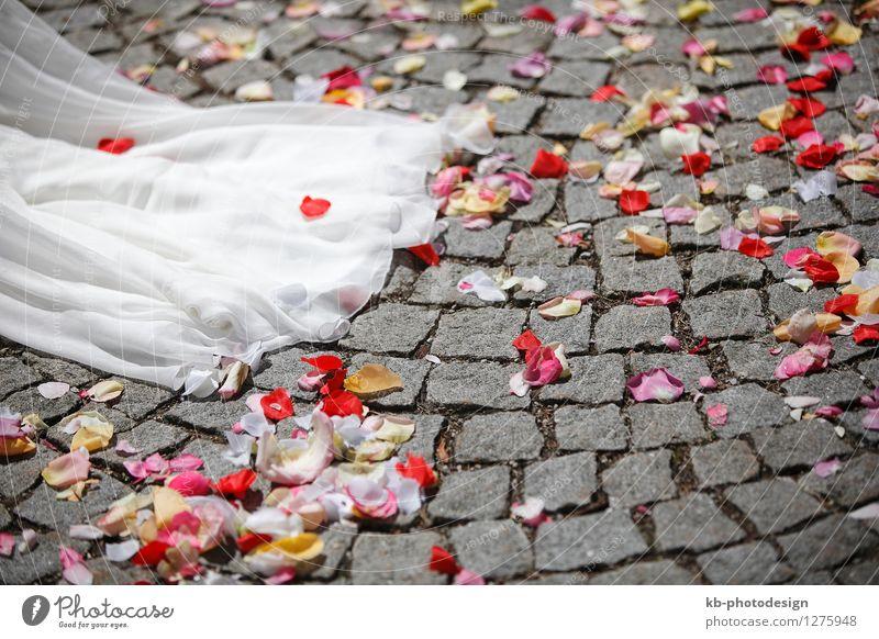 Close-up of a white wedding dress Hochzeit Veranstaltung Blume Rose Tulpe Kleid Duft Feste & Feiern Liebe Gefühle Zusammensein bridal ceremony church colorful