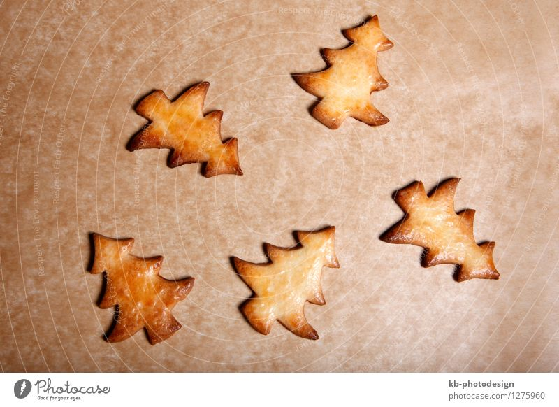 Five christmas trees on baking sheet Lebensmittel Teigwaren Backwaren Dessert Winter Dekoration & Verzierung Weihnachten & Advent Essen calm cookie december