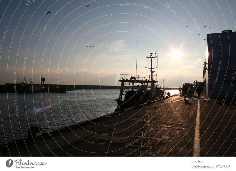 .:: SONNENuntergang im Hafen ::. Himmel Sonne Wasserfahrzeug Stimmung Hafen Frankreich Fischer