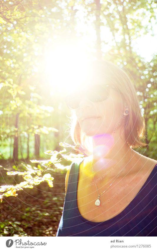 Who Loves the Sun Mensch Frau Natur Jugendliche Pflanze schön Sommer Junge Frau Sonne Baum Landschaft Freude 18-30 Jahre Wald Gesicht Erwachsene