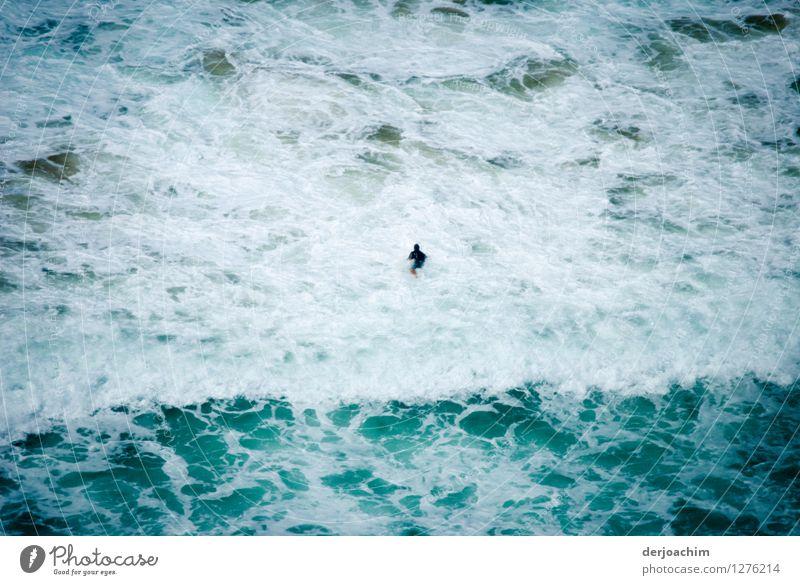 der Mann und das Meer Mensch Sommer Wasser Meer Freude schwarz Erwachsene Bewegung Schwimmen & Baden maskulin 45-60 Jahre beobachten Schönes Wetter Schwimmsport sportlich entdecken
