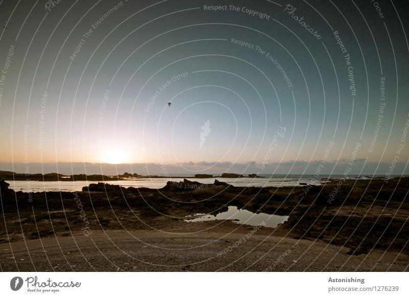 am Atlantik I Umwelt Natur Landschaft Sand Wasser Himmel Wolken Horizont Sonne Sonnenaufgang Sonnenuntergang Sonnenlicht Schönes Wetter Felsen Wellen Küste Meer