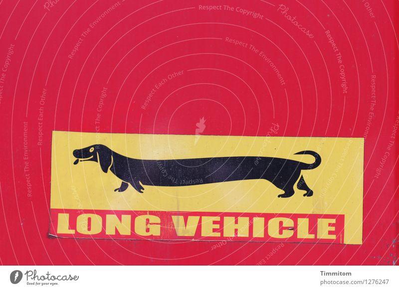 Hecklastig. Dackel Etikett Kunststoff Zeichen Schriftzeichen gelb rot schwarz Neigung Farbfoto Außenaufnahme Menschenleer Tag