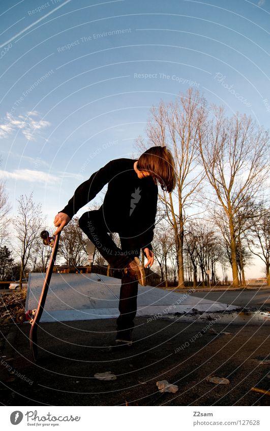 stehhilfe Abenddämmerung Skateboarding Zufriedenheit gestreift Teer Beton Licht Baum Weitwinkel Jugendliche stehen Sturz Streifen Park Blatt Schuhe Wolken