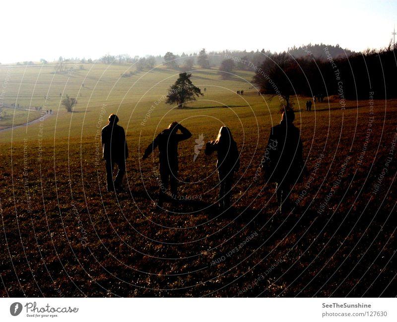 Herbstspatziergang Wald dunkel fremd Wiese Spatziergang Mensch anonym Wege & Pfade Spaziergang