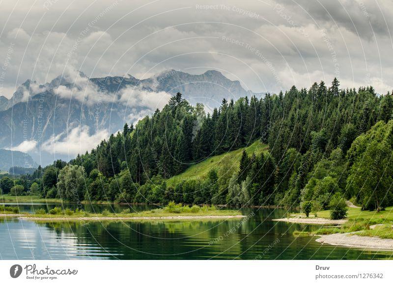 Forggensee, Allgäuwälder und Alpengipfel Angeln Ferien & Urlaub & Reisen Sommer Sommerurlaub Berge u. Gebirge Natur Landschaft Pflanze Wasser Himmel Wolken