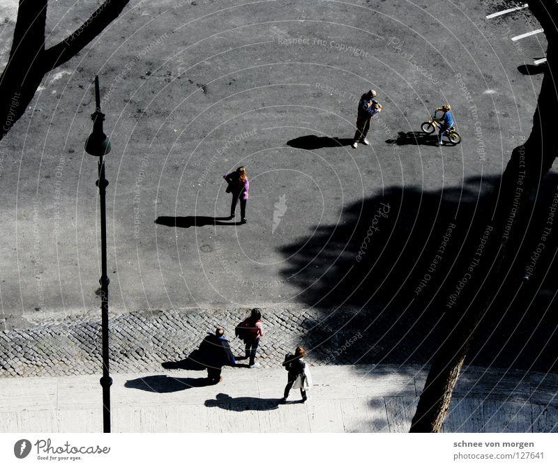 orientierungslos Mensch weiß Baum schwarz ruhig Straße dunkel Wärme Wege & Pfade Menschengruppe hell gehen laufen hoch beobachten Niveau