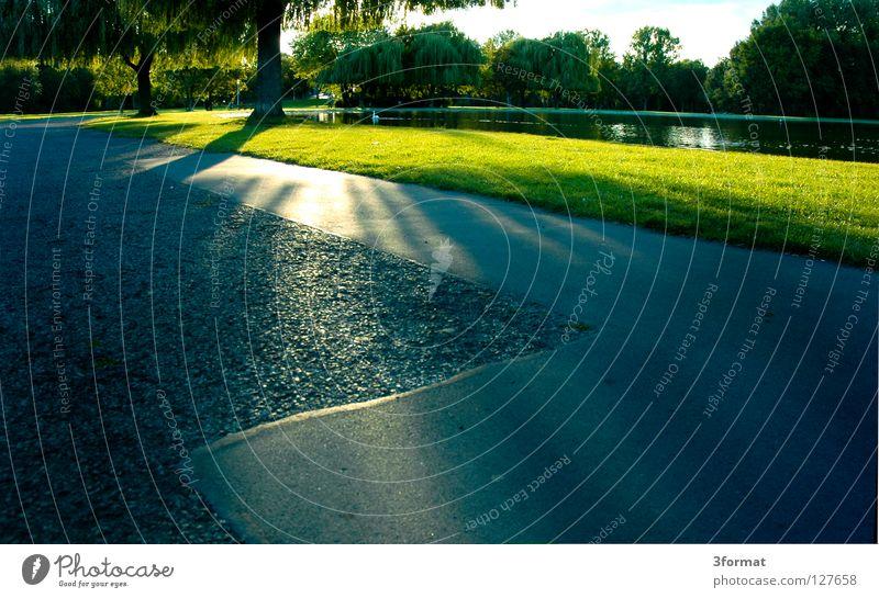 peißnitz blau grün Sonne Sommer Wiese grau Garten Wege & Pfade See Park Freizeit & Hobby Beton Spaziergang Asphalt Lagerhalle Teich