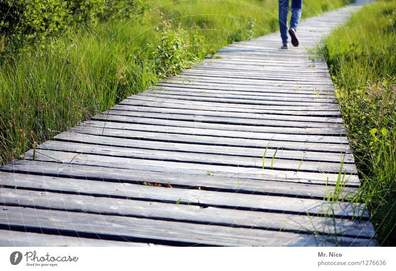 bewandert Freizeit & Hobby Ferien & Urlaub & Reisen Tourismus Ausflug Abenteuer Ferne wandern Beine Fuß 1 Mensch Umwelt Natur Landschaft Schönes Wetter Pflanze