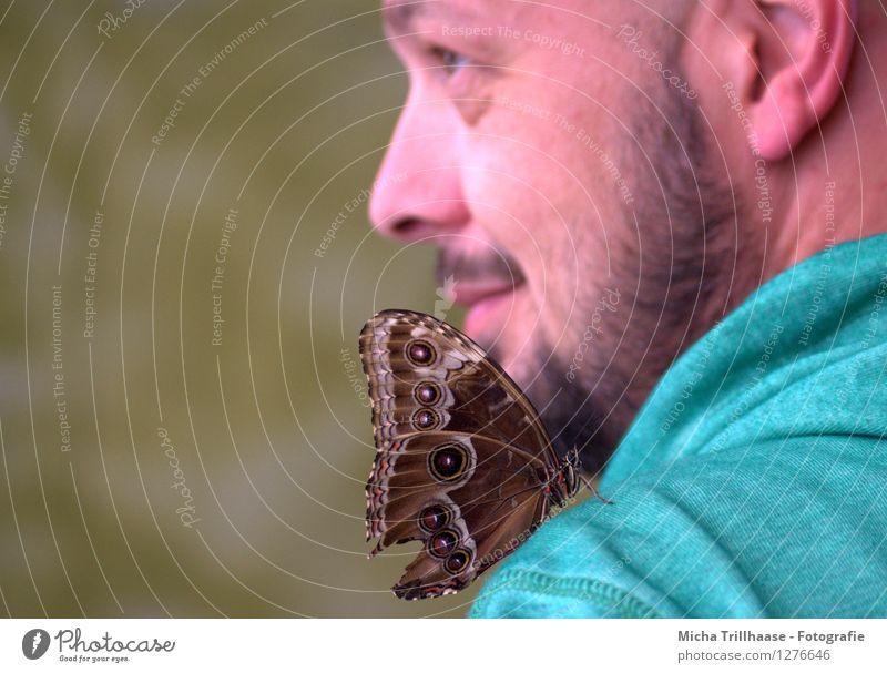 Neugierig Mensch Natur Mann schön Sommer Tier Gesicht Erwachsene Umwelt fliegen maskulin Wildtier Flügel beobachten Vertrauen