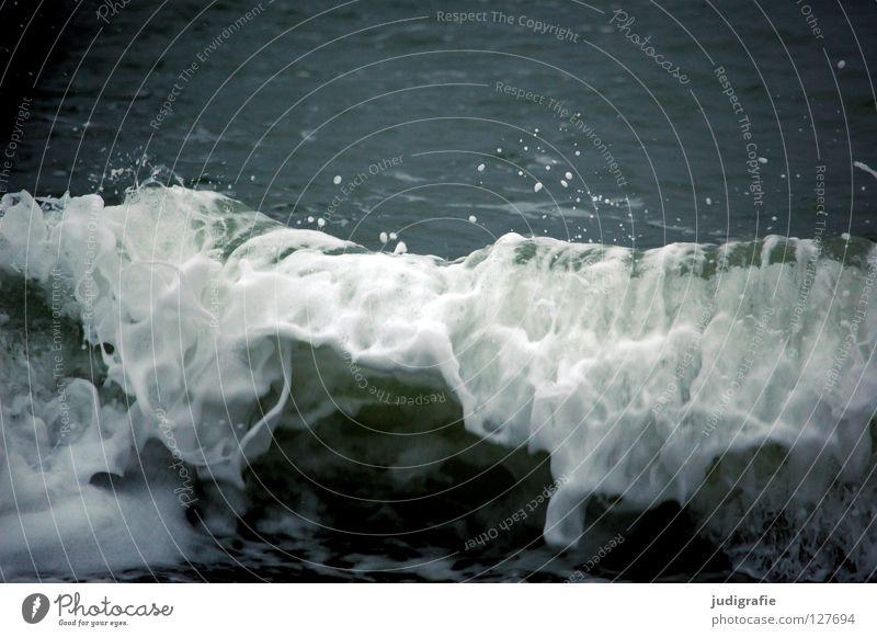 Welle Gischt Wellen Meer Sturm Leidenschaft Kraft Kühlung Ferien & Urlaub & Reisen kalt Schaum Farbe Strand Küste Wasser spritzen Wassertropfen Wildtier Ostsee