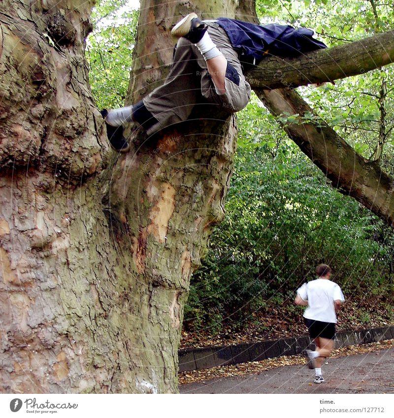 Junger Baumwanderer (I) Kind Wald Garten Park Arbeit & Erwerbstätigkeit laufen Ast Klettern anstrengen fertig Läufer transpirieren Leichtathlet Extremsport