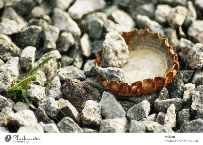 nach der Party alt grün rot Stein orange Wasserfahrzeug dreckig liegen gefährlich Bodenbelag rund Müll Bier Rost obskur Baumkrone